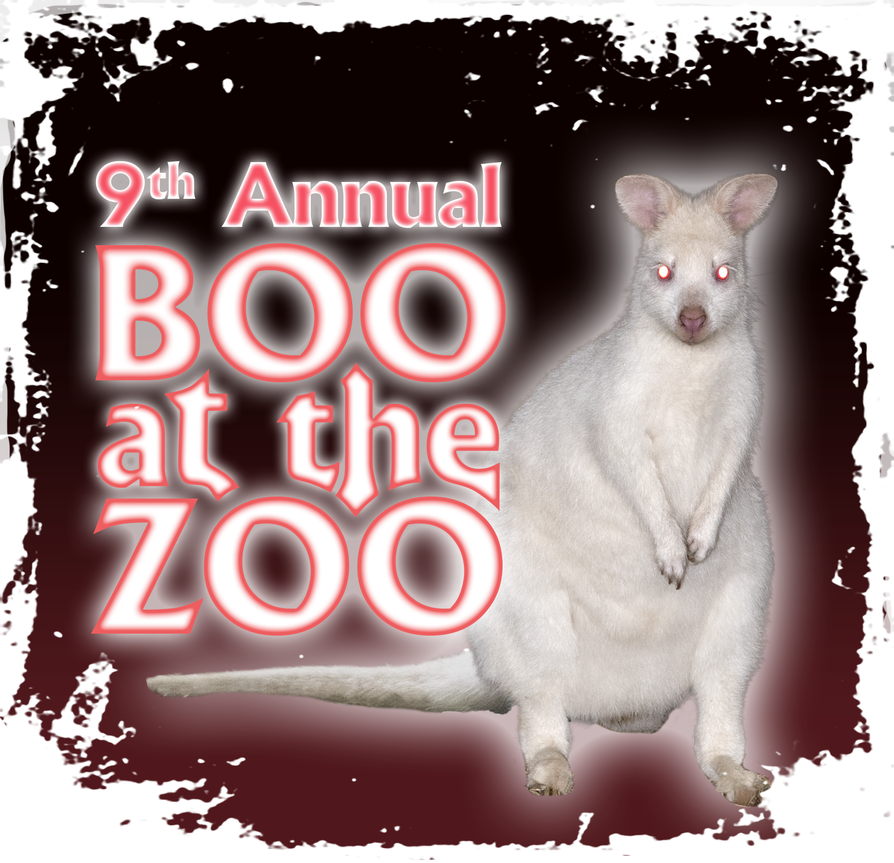 9th Annual BatZ Albino Wallaby3